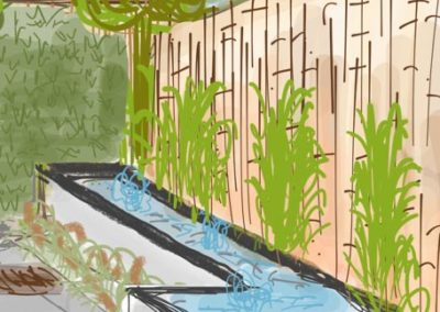 vijverbak voor bamboeschutting jegroenadvies